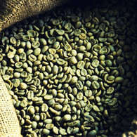 Green Coffee Beans Suppliers - Green Coffee Bean Extract Manufacturers in India | Green Coffee Beans Manufacturers | Scoop.it