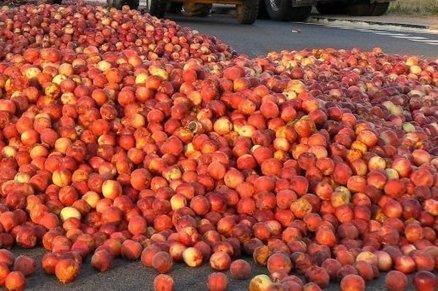 Fruits et légumes: Leader Price dans le viseur des producteurs | Arboriculture: quoi de neuf? | Scoop.it
