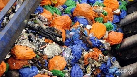 Food Waste 147 kilos per person | Science-Into Food Security | Scoop.it