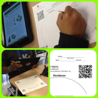 QR Codes to Explore Trees | QRCodes: In the Classroom | Scoop.it