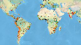 Crean un mapa mundial de conflictos ecológicos - BBC Mundo - Noticias | CF ALOJ-Internacional | Scoop.it