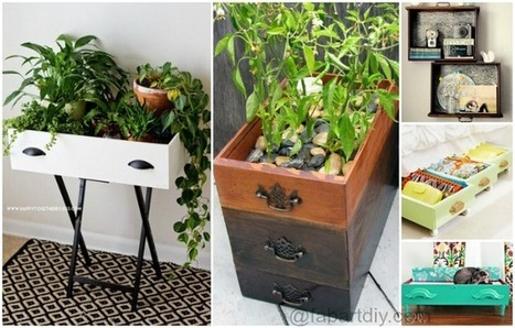 15 Creative Ways to Recycle Your Old Drawers | Upcycled Objects | Scoop.it
