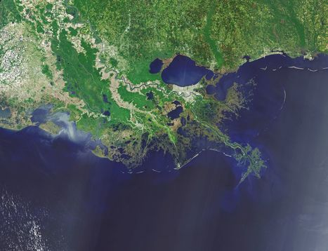This is what Louisiana stands to lose in the next 50 years | Natural History, Environment, Science, & Robots | Scoop.it