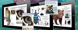 Learning and Teaching with iPads: Learning isn't about the Apps | Technology for school | Scoop.it
