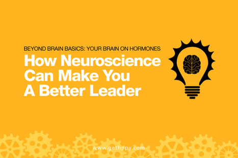 Your Brain on Hormones: How Neuroscience Can Make You a Better Leader | Happiness At Work - Hppy Scoop | Scoop.it