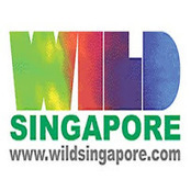 wildsingapore news: Space for street art along Rail Corridor | Street art news | Scoop.it