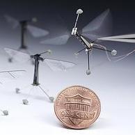 La extraordinaria mosca robótica de Harvard | Tecnología E.S.O. | Scoop.it
