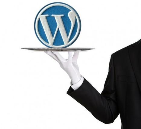 Formation & Coaching WordPress à la carte | WordPress France | Scoop.it