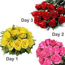 Send flowers to Gorakhpur - Send Gifts to Gorakhpur, Send Cakes Gorakhpur | florist in delhi | Scoop.it