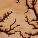 High Voltage Erosion: 15,000 Volts Travels Through Wood | Colossal | Neurobiology | Scoop.it