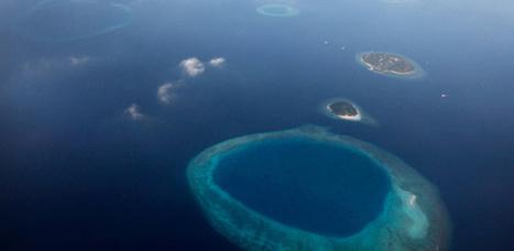 Les coraux des Maldives atteints par El Niño  | Zones humides - Ramsar - Océans | Scoop.it