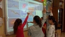 Permettre aux enfants de devenir auteurs de leurs apprentissages à l'école primaire. | Educnum | Scoop.it