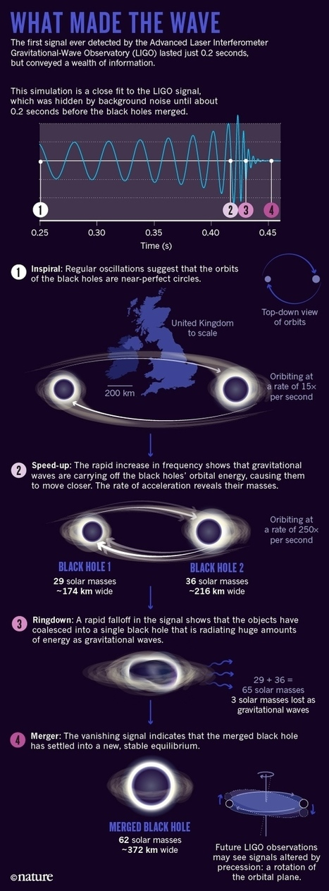 The black-hole collision that reshaped physics | Amazing Science | Scoop.it