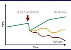 Characteristics of resilience | CRISES | Scoop.it
