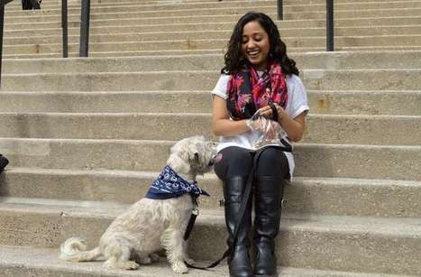 Student's research finds dog, cat owners differ on 'Better Than Average Effect' | animals and prosocial capacities | Scoop.it