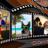 The Canine Community Reporters  News