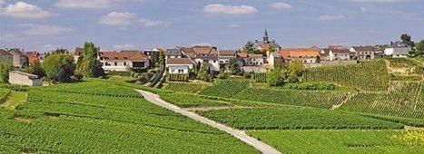 Unesco: La Champagne retient son souffle | Le vin quotidien | Scoop.it