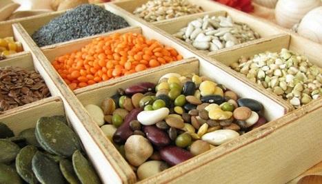 Les légumineuses, une source de protéines idéale | Légumineuses | Scoop.it