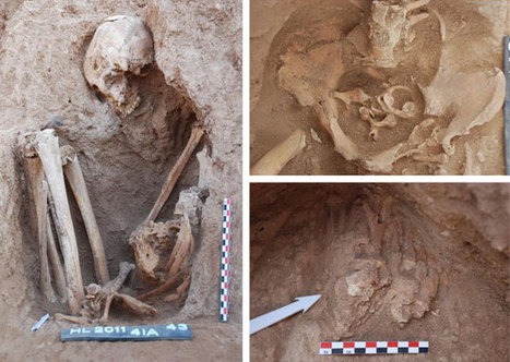 Taphonomic analysis of Neolithic seated burials | Neolithic Life | Scoop.it
