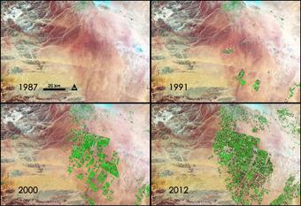 Fields of Green Spring up in Saudi Arabia   Global Affairs & Human Geography Digital Knowledge Source   Scoop.it