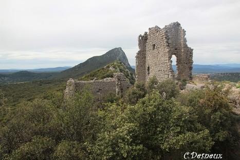 A la recherche du trésor de Montferrand ! | Nos Racines | Scoop.it