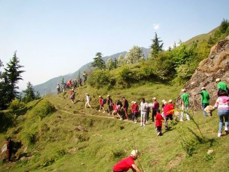 World Environment Day 2012: Let's pledge to make earth a better place - Times of India | The Glory of the Garden | Scoop.it