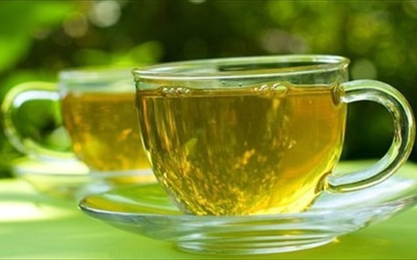 13 λόγοι για να πίνετε πράσινο τσάι   ΥΠΕΡΤΡΟΦΕΣ & ΒΟΤΑΝΑ   Scoop.it