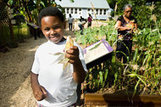 Juneteenth Gardens: Planting the Seeds of Survival | Our Black History | Scoop.it