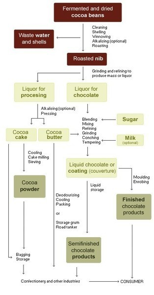 The Chocolate Review | Where does chocolate come from? | Beans, Cocoa, Chocolate, Process, Cacao-The Chocolate Review | 9 SOSE Farm to Fridge Food Investigation | Scoop.it