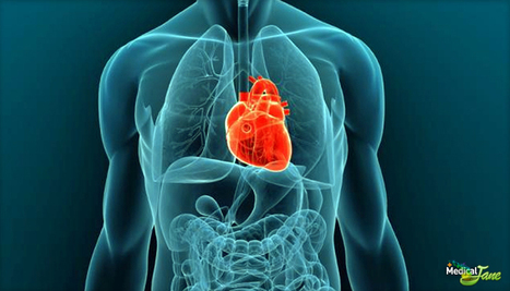 CBD May Prevent Cardiac Damage Caused By Doxorubicin | Natural History, Environment, Science, & Robots | Scoop.it