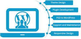 Hire WordPress developers, Experts in WordPress | Web Development & Designing | Scoop.it