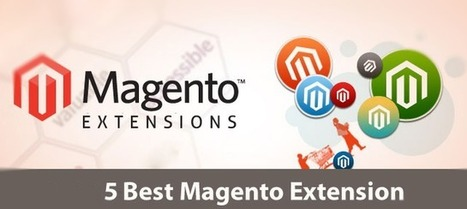 Top 5 Magento Extensions for 2014 | Ecommerce logistics and start-ups | Scoop.it