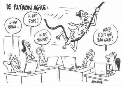 Qu'est-ce qu'un patron agile ? | Management et organisation | Scoop.it