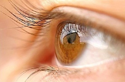 Omega-3 and GLA supplement backed to battle dry eye: Trial data - NutraIngredients.com | vision | Scoop.it