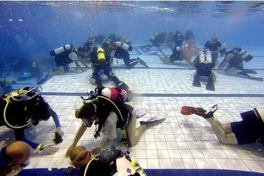 VIDEO: Scuba divers aim for dominoes  top spot | Escape Artist Graphix | Scoop.it
