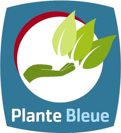 Horticulture : le label Plante bleue est reconnu Haute valeur environnementale | Chimie verte et agroécologie | Scoop.it
