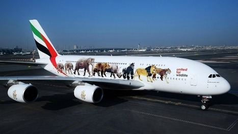 Emirates Air Pulls Back On Africa Expansion As Economic Problems Plague Continent #Investorseurope stockbrokers   Africa : Commodity Bridgehead to Asia   Scoop.it