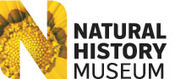 the Natural History Museum - Walking with woodlice | Life processes and living things | Scoop.it