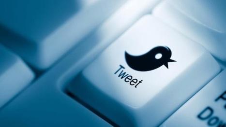 De l'usage de Twitter à la formation des chercheurs (une tribune à méditer) | François MAGNAN  Formateur Consultant | Scoop.it