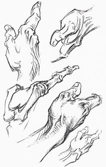 handoc.com - Frank R Wilson - Drawings and other images | Drawing to Learn. Drawing to Share. | Scoop.it