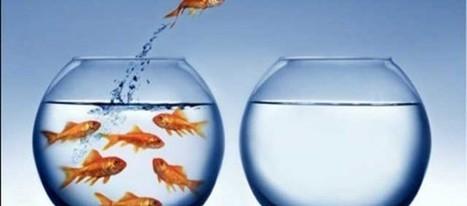 Un mercado para mi startup: la estrategia del océano azul | Creativity and entrepreneurship | Scoop.it