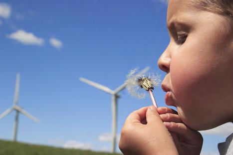 GroenGelinkt | Missing Link Projects Groen & Duurzaamheid | Scoop.it