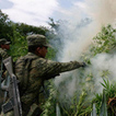 Mexico Considers Legalizing Marijuana | Cannabis & CoffeeShopNews | Scoop.it