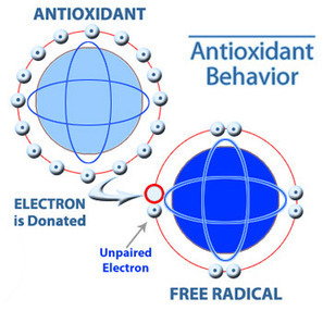 What Are Antioxidants and Free Radicals? - Kangen Water | Kangen Water for health | Scoop.it