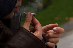 Pot smokers more than double risk of dropping out of school - Life & Style - NZ Herald News | Drugs and Alcohol in NZ Society | Scoop.it