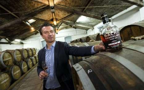 Le chêne américain agite la filière cognac   Le Cognac et son vignoble   Scoop.it