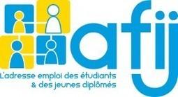 Faute de soutien de l'Etat, l'AFIJ se voit obligée de mettre un terme à ses activités en faveur de l'emploi des jeunes | Le blog des actualités de l'AFIJ | Education | Scoop.it