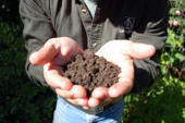 Master Gardeners: The dirt on soil problems | 100 Acre Wood | Scoop.it