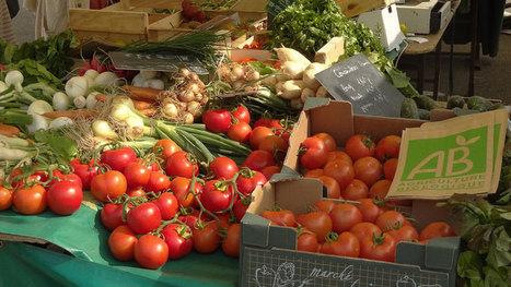 L'Agriculture Biologique séduit près de la moitié des Français ! - notre-planete.info | consommation biologique | Scoop.it