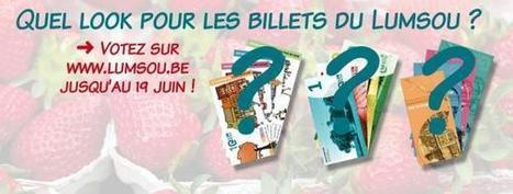 Votes ouverts pour le futur billet Lumsou, monnaie locale de Namur | Participation citoyenne | Scoop.it